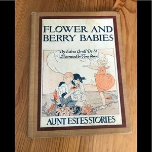 Flower and Berry Babies Antique Book